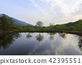 연못,통도사,양산시,경남 42395551