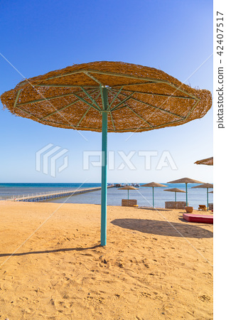 Parasol on the beach of Red Sea in Hurghada, Egypt 42407517