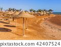 beach, landscape, parasol 42407524