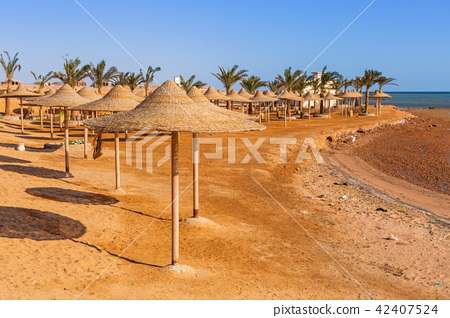 Parasol on the beach of Red Sea in Hurghada, Egypt 42407524