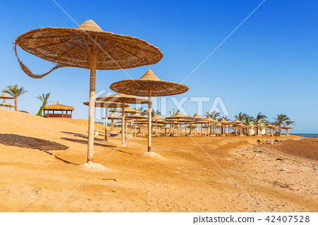 Parasol on the beach of Red Sea in Hurghada, Egypt 42407528