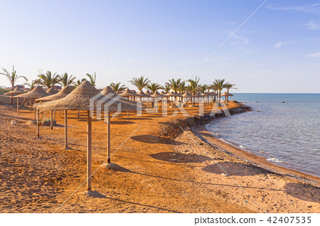 Parasol on the beach of Red Sea in Hurghada, Egypt 42407535