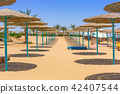Parasol on the beach of Red Sea in Hurghada, Egypt 42407544