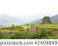 summer, stone wall, takeda castle ruins 42408849