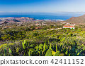 Aerial view on Costa Adeje landscape with volcanic 42411152