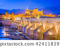 Cordoba, Spain Skyline 42411839