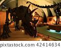 พิพิธภัณฑ์กลางคืน (Triceratops) 42414634