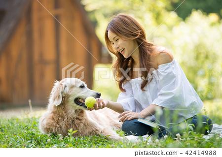 젊은여자, 개, 강아지, 애완동물, 골든 리트리버 42414988