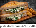 Vegetarian panini with young spinach leaves 42435586