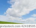 ท้องฟ้า,ท้องฟ้าเป็นสีฟ้า,เมฆ 42438505