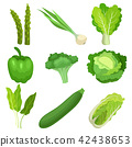 vegetable vector food 42438653