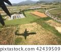 เครื่องบิน,ผืนนา,ไร่นา 42439509
