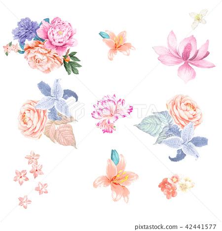 鮮豔的水彩玫瑰 42441577