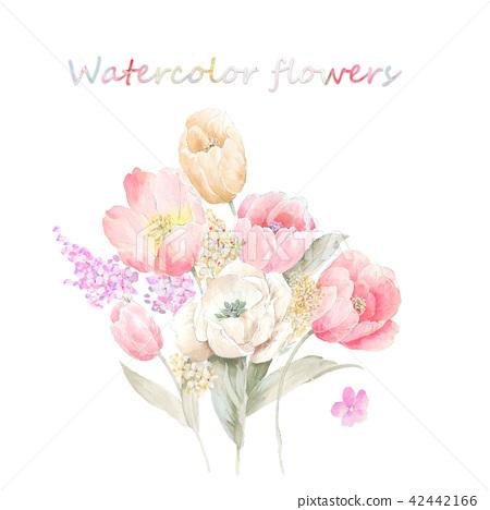 水彩手繪玫瑰花卉集合 42442166