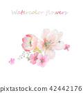 수채화 손으로 그려진 장미 꽃 컬렉션 42442176