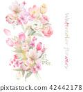 수채화 손으로 그려진 장미 꽃 컬렉션 42442178