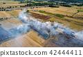 Smoke from burning rice stubble 42444411