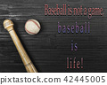 baseball,bat,ball, port,american,copyspace,wooden 42445005
