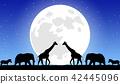 月亮和动物 42445096