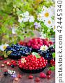 Fresh ripe summer berries  42445340