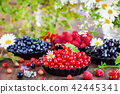 Fresh ripe summer berries 42445341