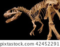 Dinosaur skeleton on black isolated background 42452291