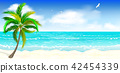 Tropical sandy beach 42454339