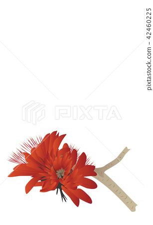 Flower of prefecture Okinawa deigo 42460225
