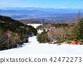 从Pilatus Tateshina Snow Resort俯瞰中央阿尔卑斯山和Mt. Ontake 42472273
