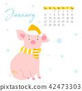 2019, pig, month 42473303