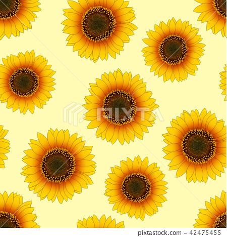 Orange Yellow Sunflower on Beige Ivory Background 42475455
