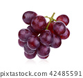 fresh red grape isolated on white background 42485591