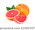 whole and slices grapefruit with green leaves  42485597