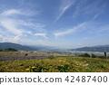 landscape, scenery, scenic 42487400