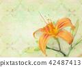 flower tender orange 42487413