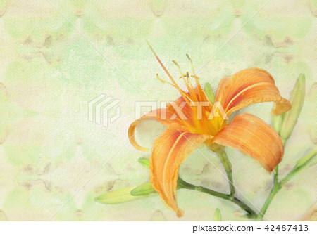 Tender orange lily flower. Holiday card template. 42487413