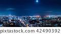 도쿄의 야경 42490392
