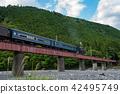 오이가와 철도 오오 네 번째 교량을 달리는 SL 증기 기관차 42495749