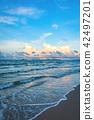 the beach and blue sky on sunny day . 42497201