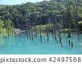 푸른 연못 (홋카이도 비 에이 쵸) 42497568