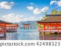 Miyajima, Hiroshima, Japan 42498323