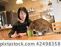 고양이, 여자, 여성 42498358