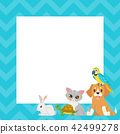 video and photo frame background 42499278