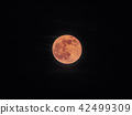 full moon red, blood moon  - bloodmoon isolated - 42499309