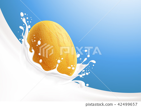 Milk splash and yellow melon 42499657