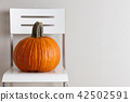 Large orange pumpkin on white chair on gray wall background 42502591