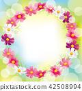코스모스, 꽃, 플라워 42508994