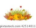 vector, autumn, leaf 42514011