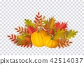 vector, autumn, leaf 42514037