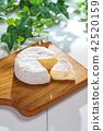 치즈 42520159